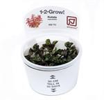 Troica 1-2-Grow!